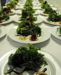 salad-plates